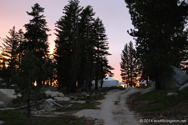 2014_Tahoe Rim Trail Enduranc Runs 1083